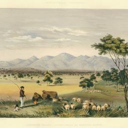 Lynedoch Valley