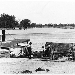 Barwon loading fruit