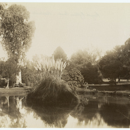 Photograph album 2