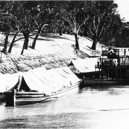 P.S. William R. Randell with three barges on the Darling River