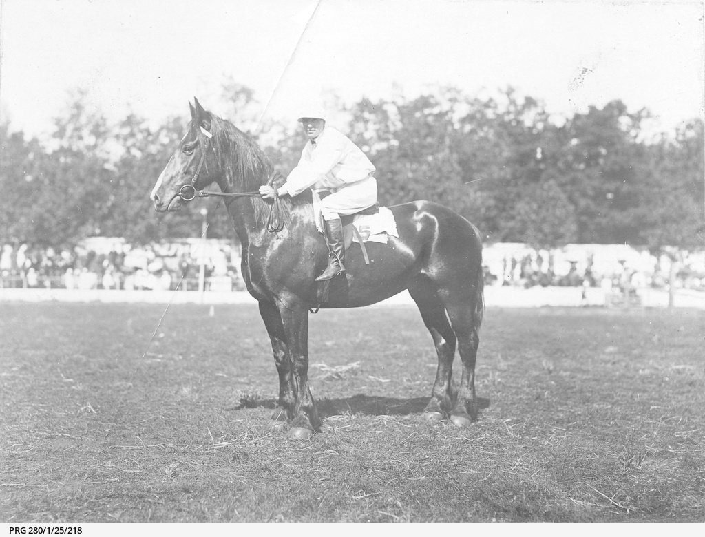 Horse called 'Majestic' and rider