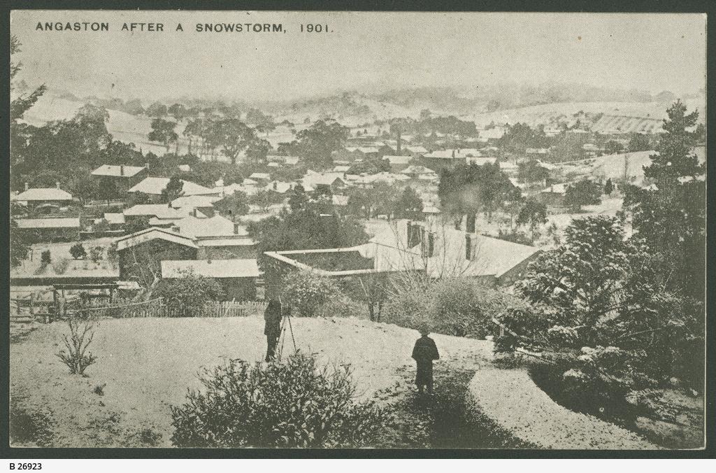Snow at Angaston