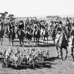 Adelaide Hunt Club meet, 1938