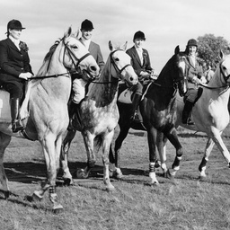 Adelaide Hunt Club, 1949