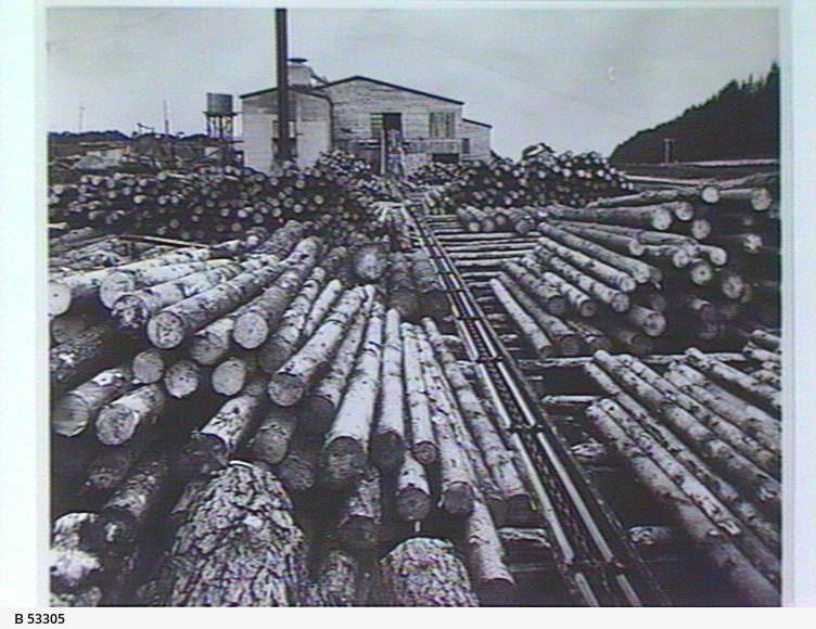 Sawmill, Mount Burr