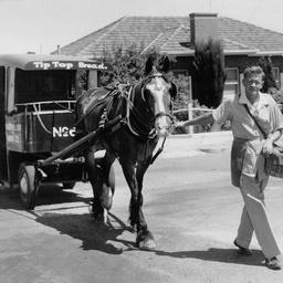 A horse drawn bread cart