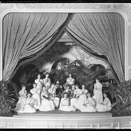 Theatre at Mr Barr-Smith's residence