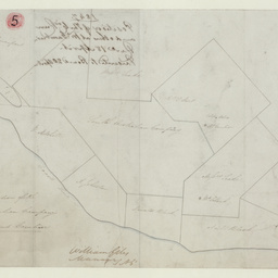 Plan shewing the position of the South Australian Company's Run near Mount Gambier [cartographic material]