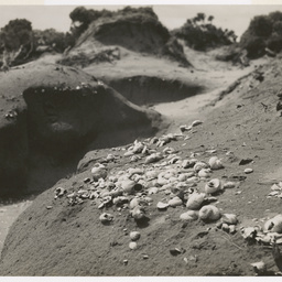 Soil erosion near Robe, S.A