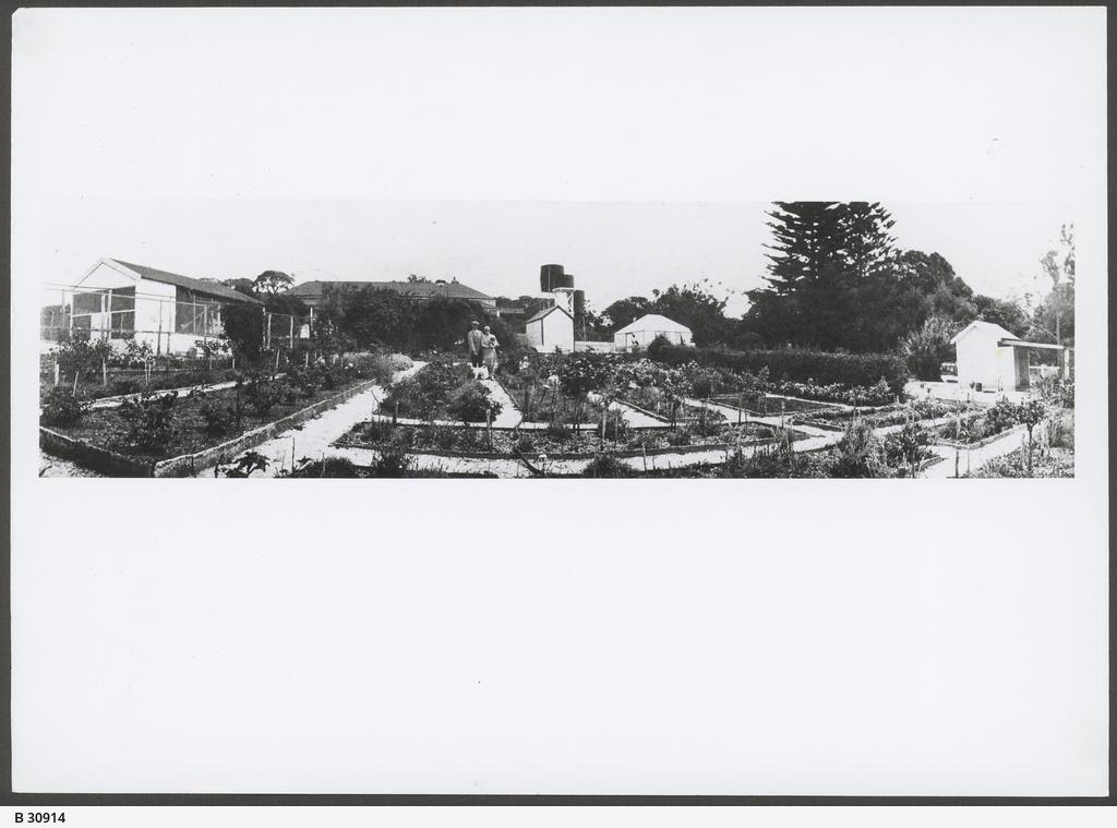 The Hermitage house, Robe