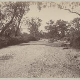 Arkaringa Creek