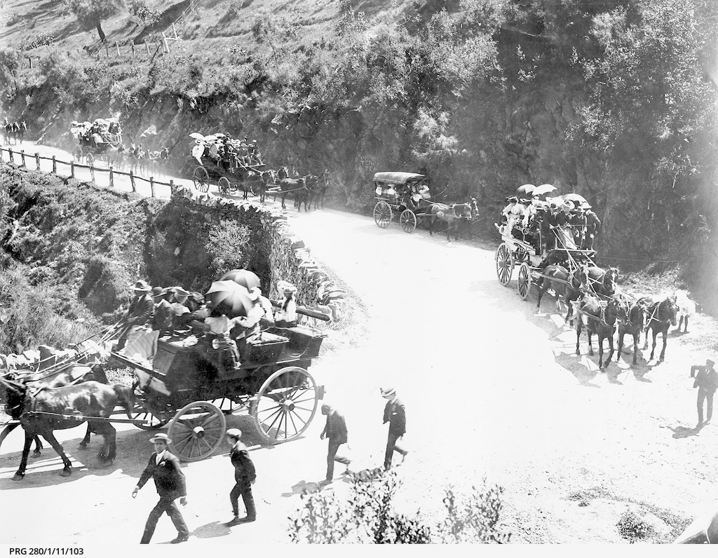 Horse drawn vehicles taking visitors to the Mount Lofty Ranges, South Australia