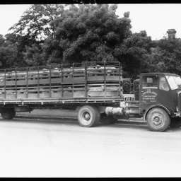 Stock transport at Mount Gambier