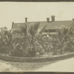 The house and front garden of Wittunga farm