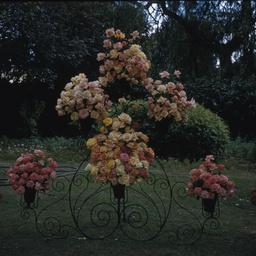Flower Day display