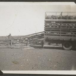 H.E. Ding's stock truck