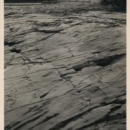 Glaciated pavement, Inman Valley, S.A