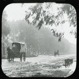 Horse drawn vehicles, Port Road