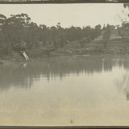 The big reservoir in Wittunga farm