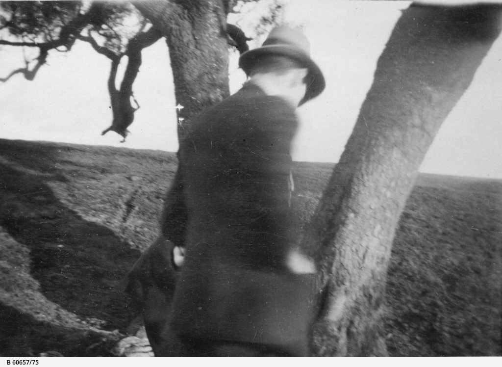 Man near tree