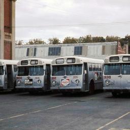 Buses at Hackney Depot