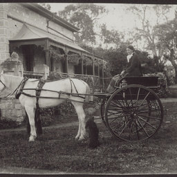 Martha White in dog cart