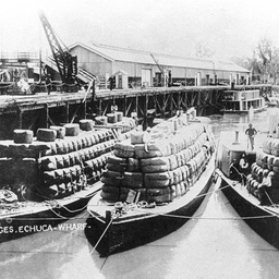 Rodney and barges loaded with wool at Echuca Wharf