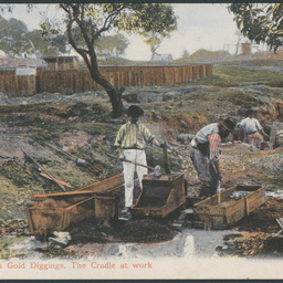 Australian Gold Diggings
