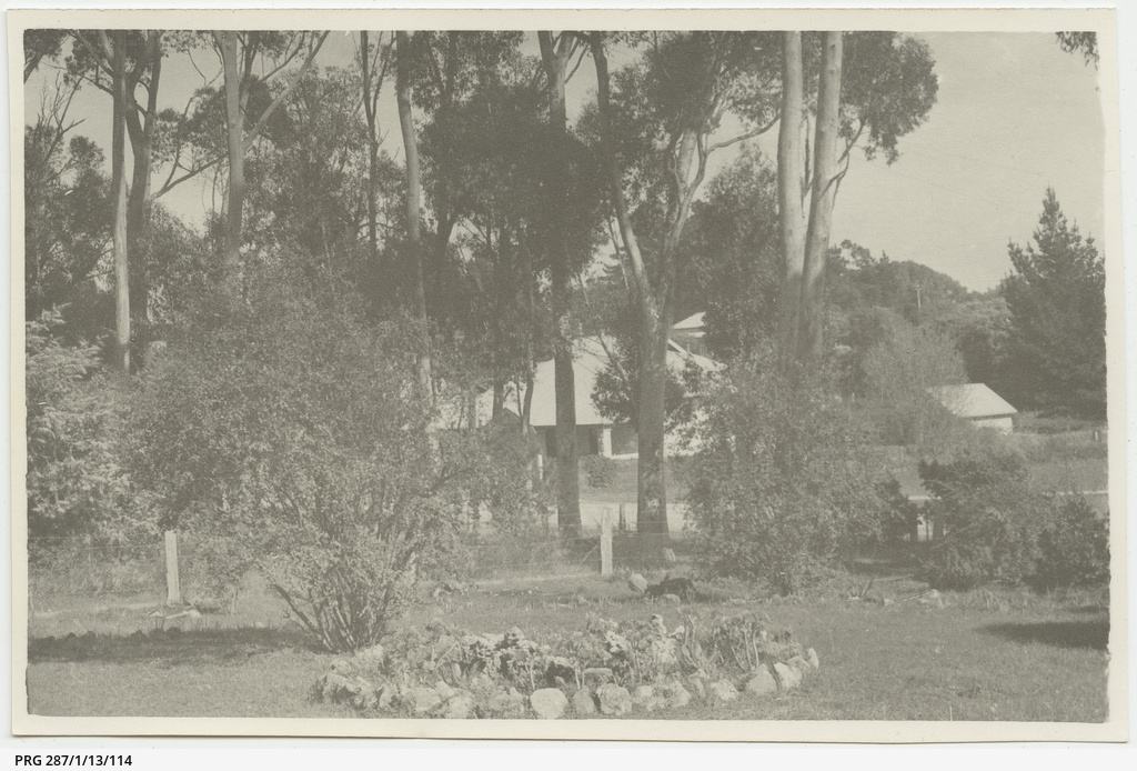 'Naracoorte - [view] from Rectory' - Saint Paul's Anglican Church