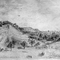 A drawing of Augusta Timber Station in Western Australia