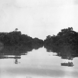 General view of part of the Murray River showing vegetation and shadows