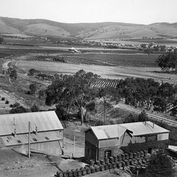 Tanunda District from Chateau