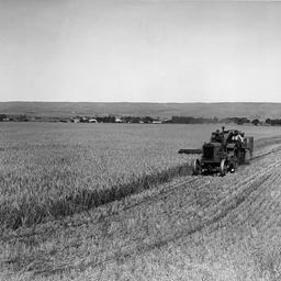 Harvester Aldinga