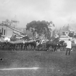 Horse drawn vehicles at the Adelaide Show