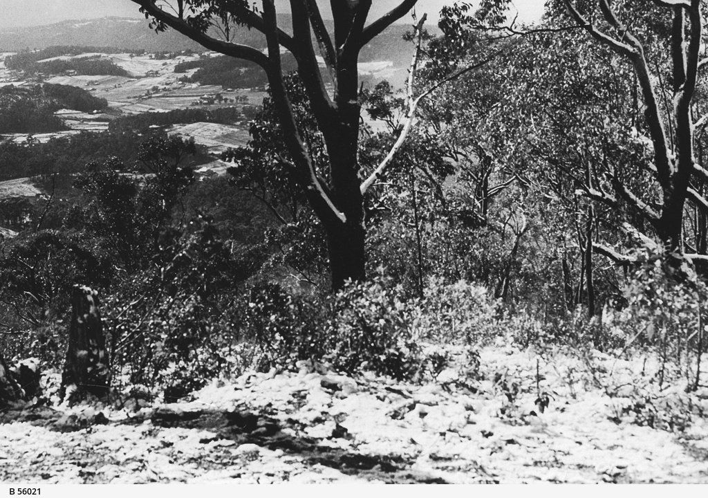Piccadilly Valley from Mount Lofty after snow
