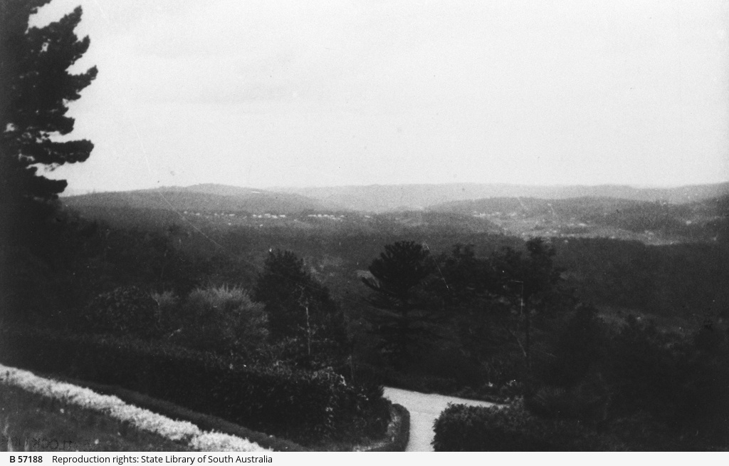 Panoramic view of Piccadilly Valley