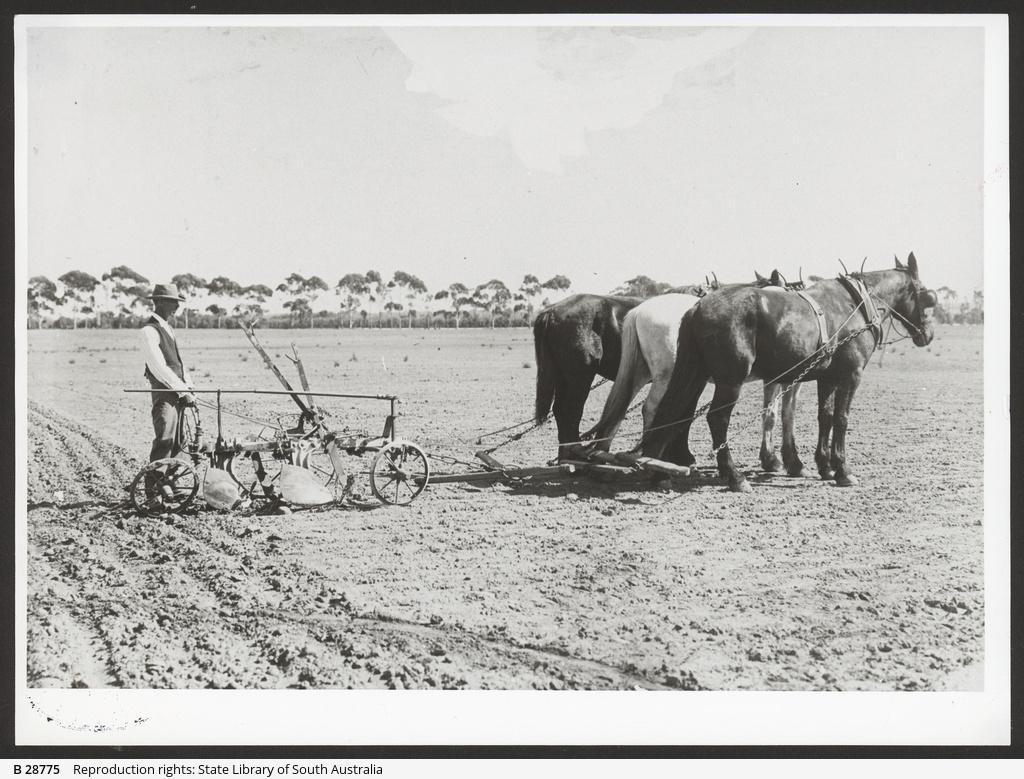 The Farrow Plough