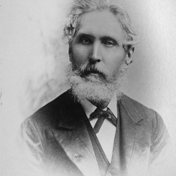 Staff of the Public Library, Museum & Art Gallery S.A. : William Nicholls