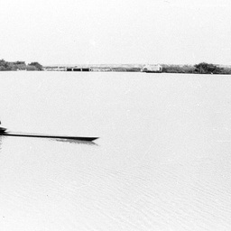 Rowers at Tailem Bend