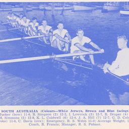 South Australian Rowing Association : SUMMARY RECORD
