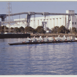Club members rowing on the Port River.