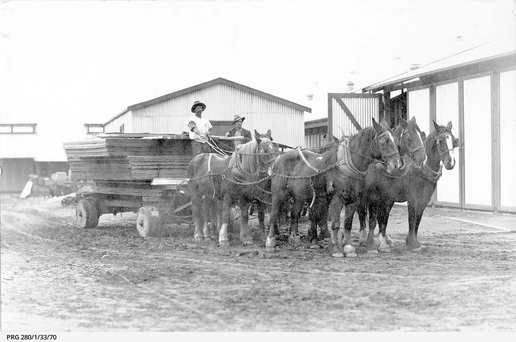 A horse team hauling a jinker laden with timber