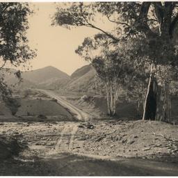 Road to the Flinders