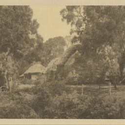 'The barn yard'