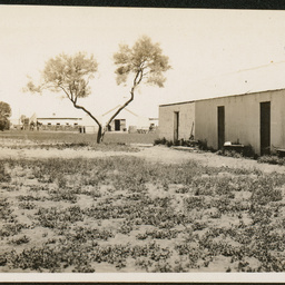 Coondambo huts and woolshed