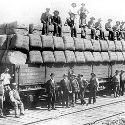 Victorian rail truck loaded with wool bales at Echuca