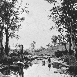 A water hole near Clare