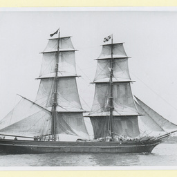 The 'Teazer' in New York Harbour