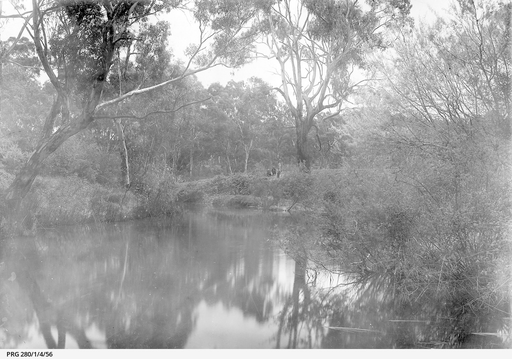 Scenic view of a water hole and vegetation in the Northern Territory