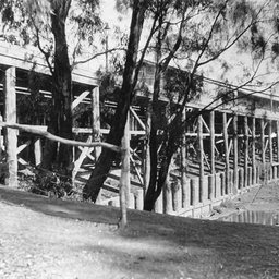 Early view of Echuca Wharf showing its wooden construction